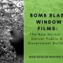 Window Film Denver