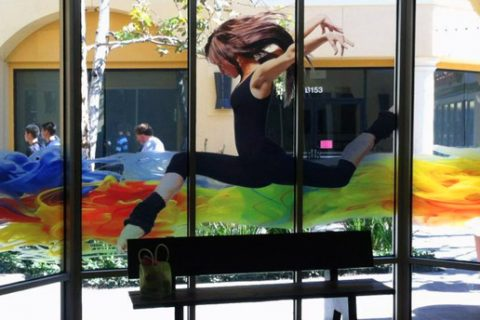 Budget Friendly Decorative Window Films Options for Corpus Christi Retail Spaces
