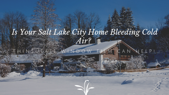 Is Your Salt Lake City Home Bleeding Cold Air? Thinsulate Window Film Can Help!