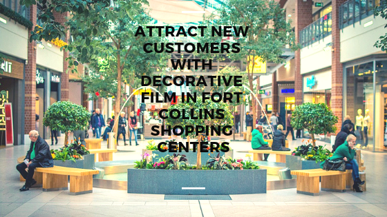 Attract New Customers with Decorative Film in Fort Collins Shopping Centers