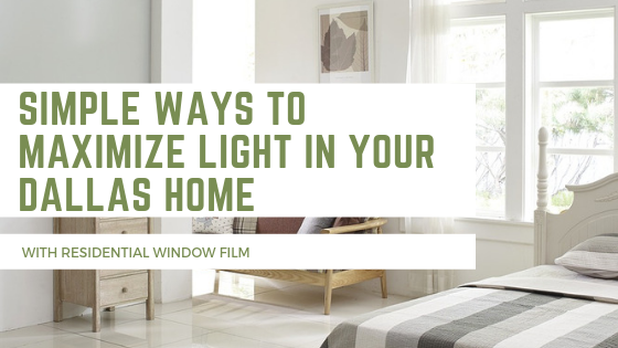 Simple Ways to Maximize Light In Your Dallas Home with Residential Window Film