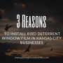 3 Reasons to Install Bird Deterrent Window Film in Kansas City Businesses
