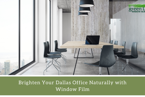 Brighten Your Dallas Office Naturally with Window Film