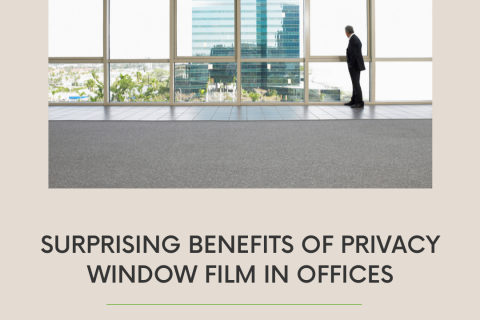 Surprising Benefits of Privacy Window Film in Offices