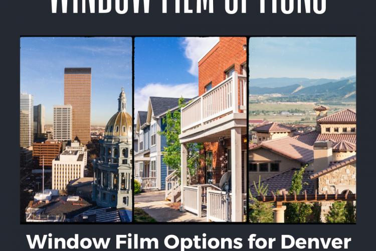 Window Film Options for Denver Neighborhoods: Which Is Best?